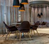 Silla Domenica Café