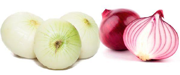 Cebolla Blanca S/2.50 x Kg , Cebolla Roja S/ 3.0 x Kg