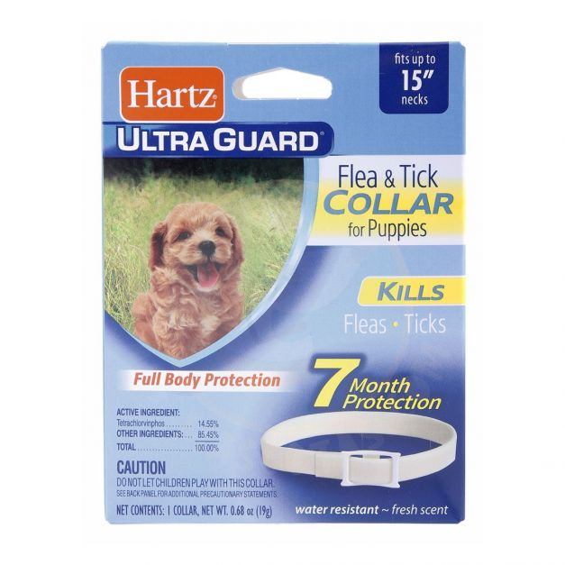 ULTRAGUARD COLLAR FOR PUPPIES