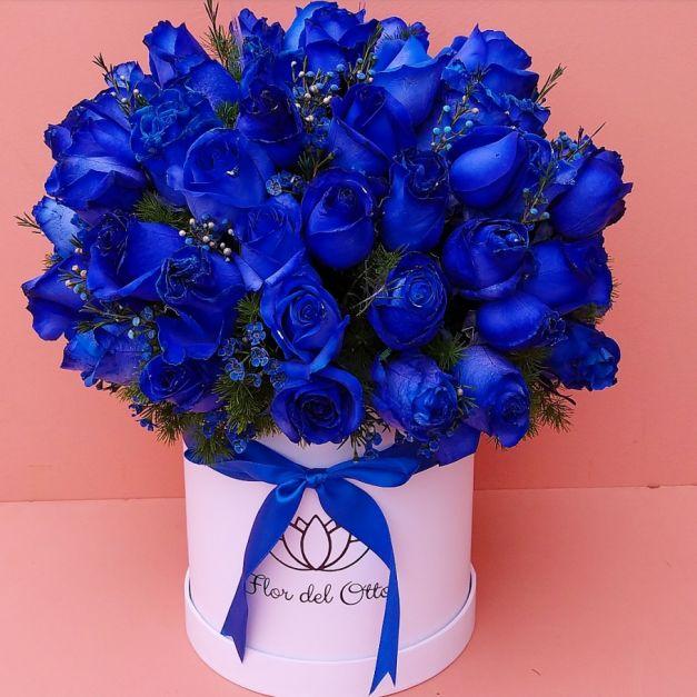 SOMBRERERA BIG BANG BLUE