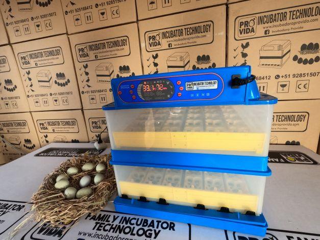 Incubadora 300 Huevos Codorniz