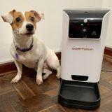 OFERTA ! Dispensador de Alimentos Inteligente para mascotas con cámara y audio  Medianas/pequeñas 6L