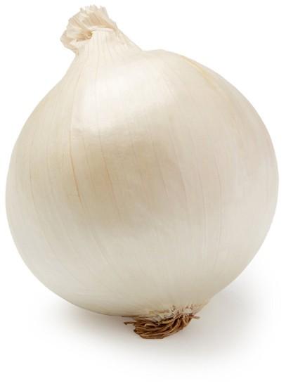 Cebolla Blanca x kg