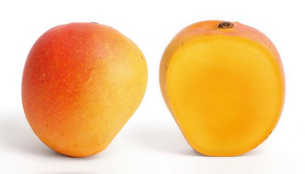 Mango Edward x Kg.