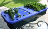 Hidrohuerto Familiar  - Kit para 28 plantas