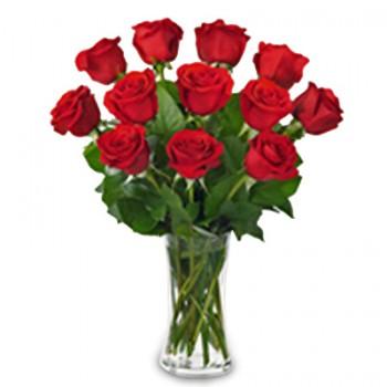 Florero de 12 Rosas -  NG07