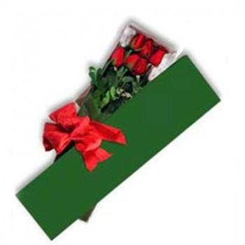 Caja con 6 rosas - NG13