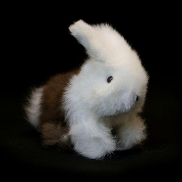 Conejo II