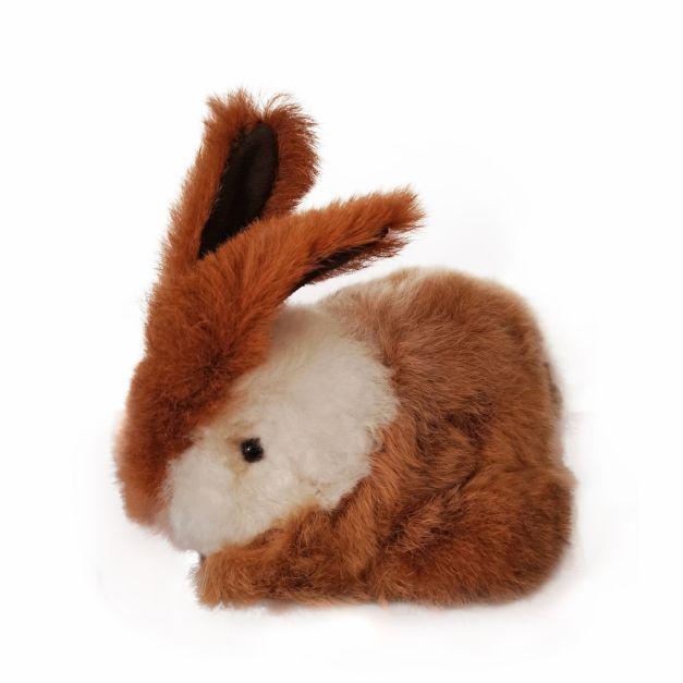 Conejo Kunu