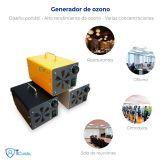 Generador de ozono portátil 10,000 mg/h