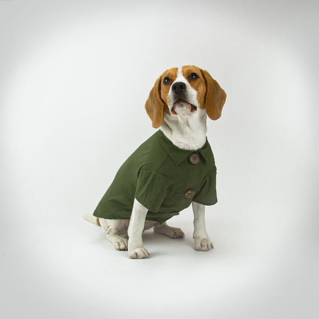 Camisa Pet Militar