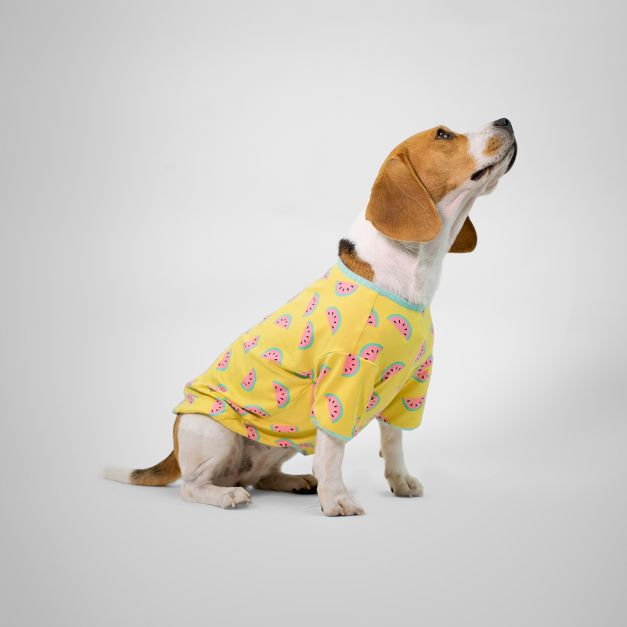 Pijama Pet Sweet Yellow