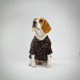 Camisa Pet Flower Fest