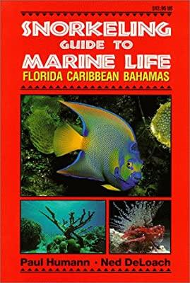 Guía para Snorkeling en Florida - Caribbean - Bahamas de Paul Humann