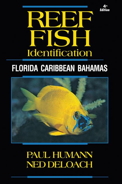 Libro Reef Fish ID Caribbean - Bahamas - South Florida de Paul Humann