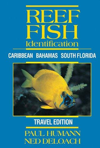 Libro Reef Fish ID Florida - Caribbean - Bahamas de Paul Humann