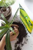 4L Fertilizante líquido orgánico