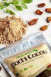 Sachi Cacao