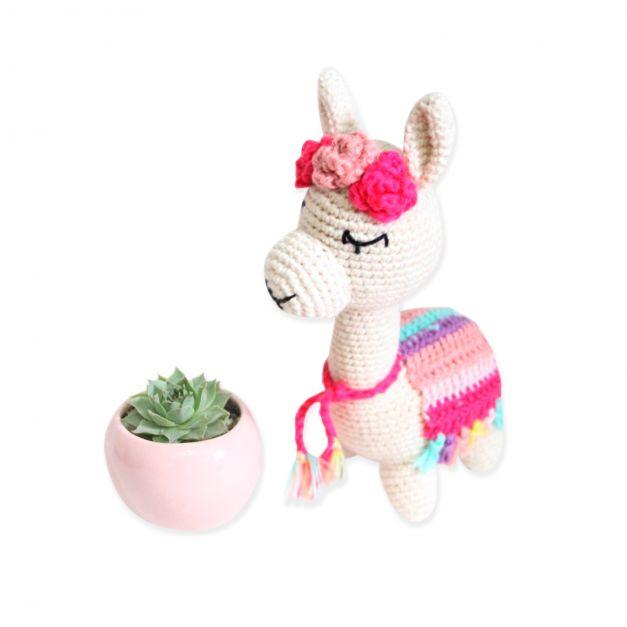 Llama Salvy